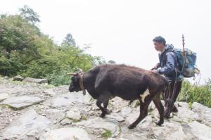 2014__Nepal0149