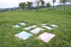 草原とキャンバス
